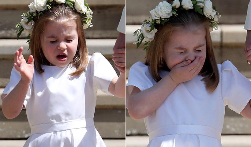 princess charlotte sneezing a